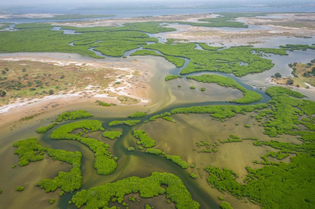 Delta Sine Saloum