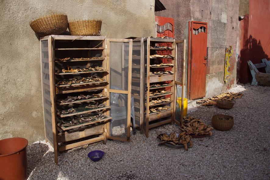 Séchage de poissons et coquillages